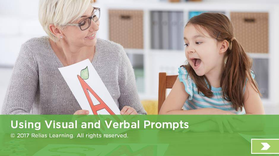 Use of Visual and Verbal Prompts