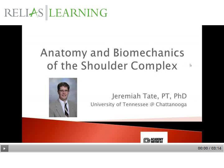 Current Concepts in Rehab of the Shoulder: Anatomy and Biomechanics ...