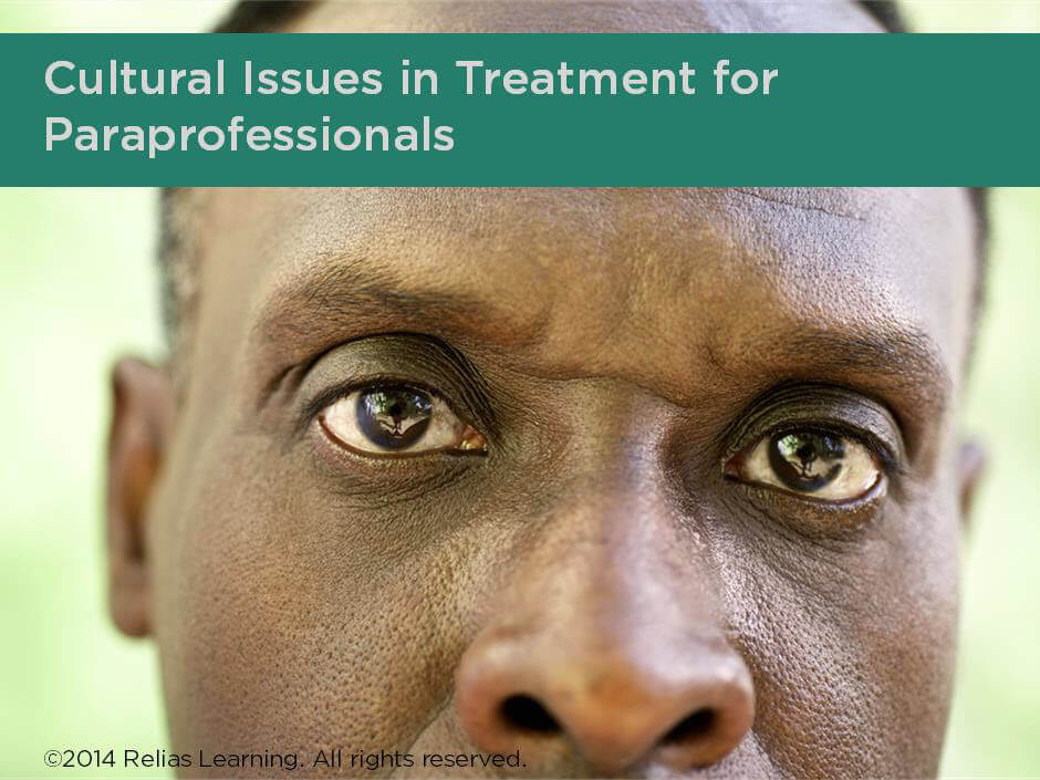 Cultural Issues in Treatment for Paraprofessionals