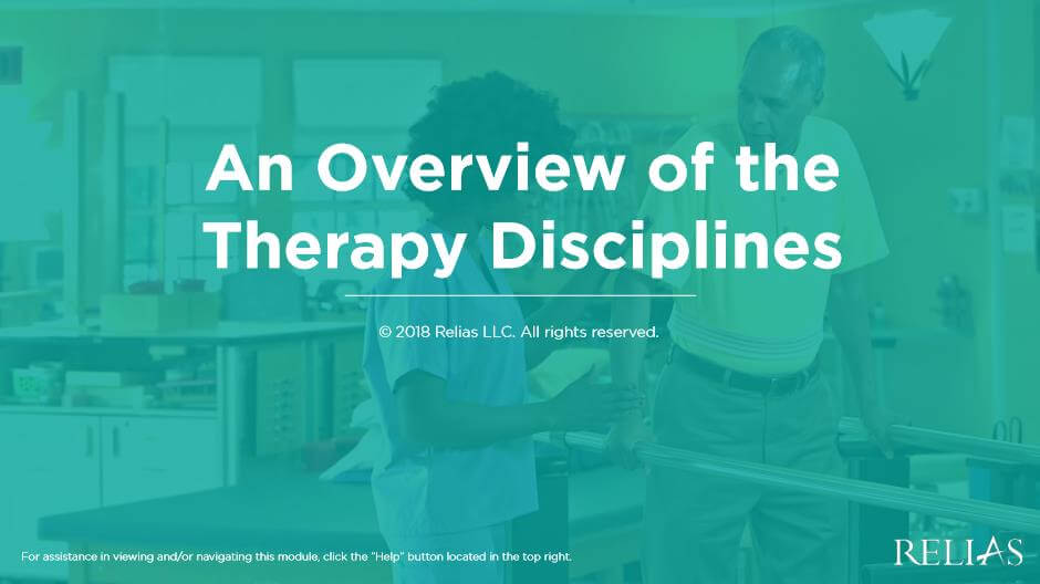 An Overview of the Therapy Disciplines