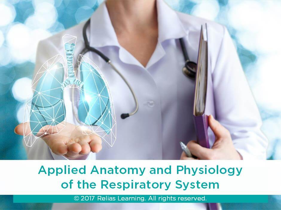 Applied Anatomy and Physiology of the Respiratory System | RELIAS ...