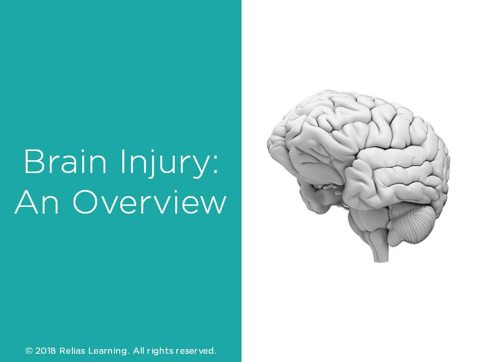 Brain Injury: An Overview